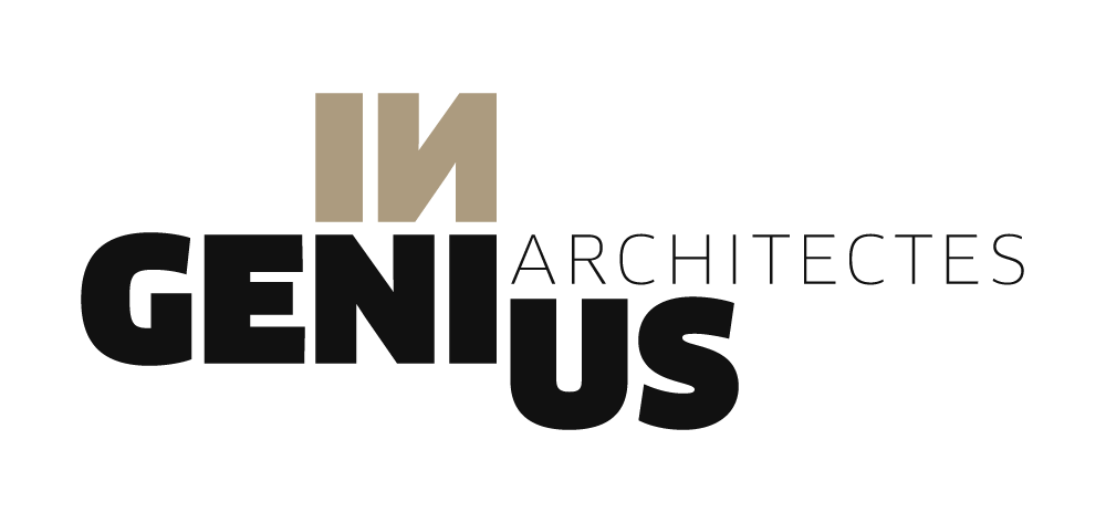 Charte Graphique Ingenius Architecte Haute Savoie